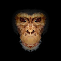 Faceted chimpanzee