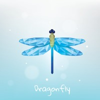 Faceted dragonfly