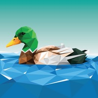 Faceted duck