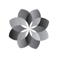 Flower in black and white pattern