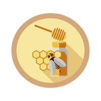 Honeycomb with bee and honey