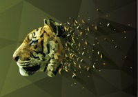 Low poly of tiger
