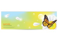 Nature banner with butterfly