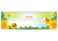 Nature banner with sunflower