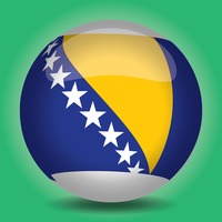Round glossy flag of bosnia and herzegovina