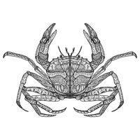 Zentangle crab design
