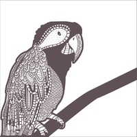 Zentangle parrot design
