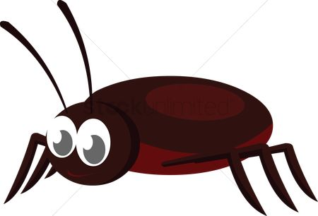 插图剪贴画 : A cockroach on white background
