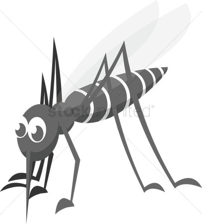 插图剪贴画 : A mosquito on white background