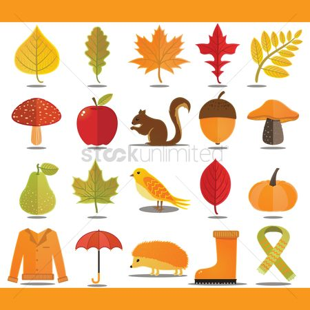 鸟类 : Autumn themed vectors