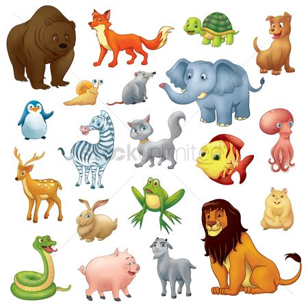 鸟类 : Collection of cartoon animals