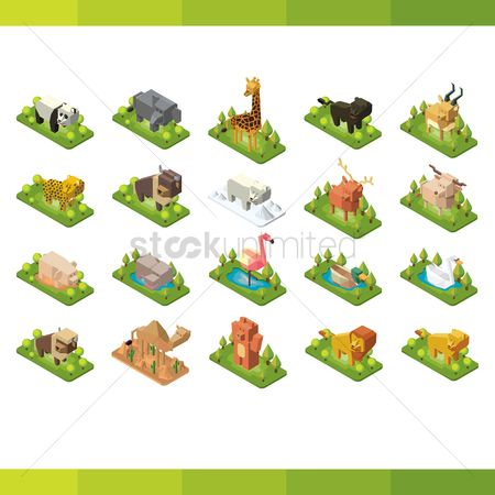 鸟类 : Collection of isometric animals