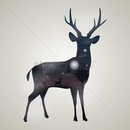 鸟类 : Double exposure of deer and forest