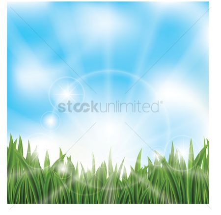 草 : Green grass against blue sky