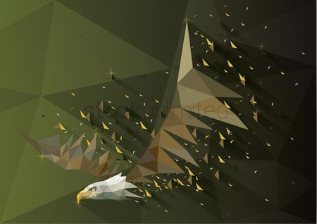 鸟类 : Low poly of eagle