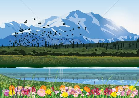 鸟类 : Mountain lake with flowers