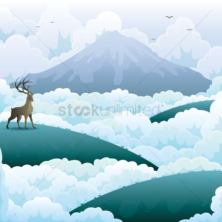 鸟类 : Mountain landscape