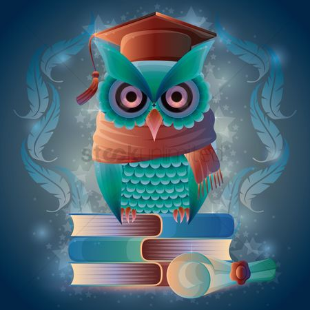 鸟类 : Owl sitting on books