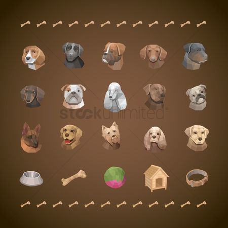 动物 : Pet dogs collection