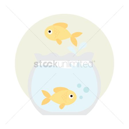 动物 : Pet goldfish