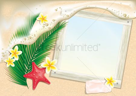 动物 : Photo frame on beach