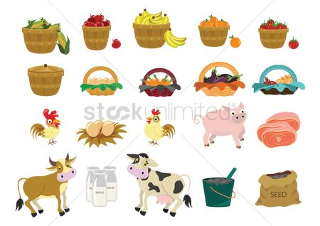 鸟类 : Set of agriculture icons
