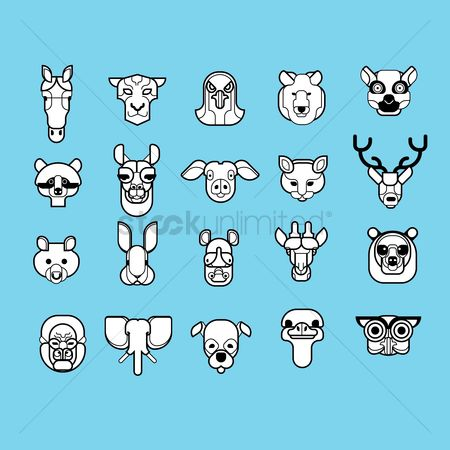 鸟类 : Set of animal mounted heads