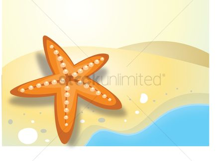 插图剪贴画 : Starfish on a seashore