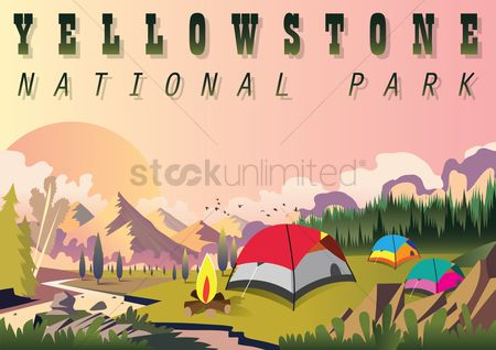 鸟类 : Yellowstone national park wallpaper