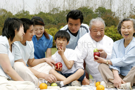 环境 : A big family picnicking in the park