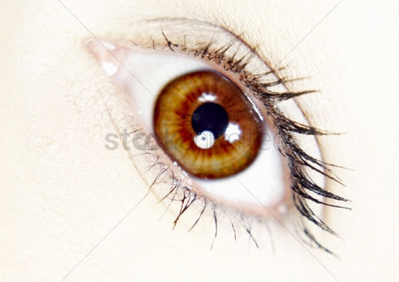 美女时尚 : Close-up of a woman s eye