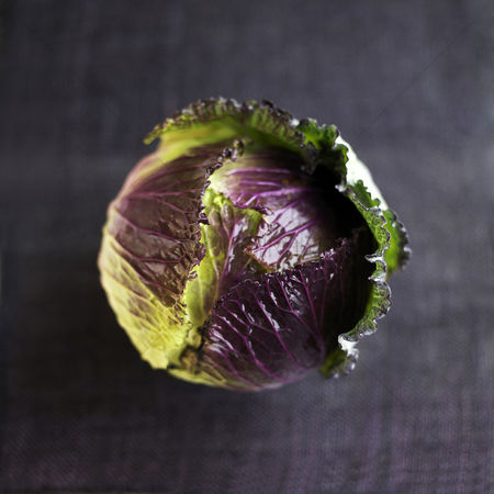 食物 : High angle close up of a cabbage